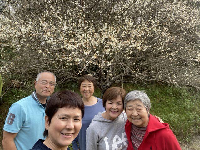 沖縄でも梅が咲くんだよ〜〜♬